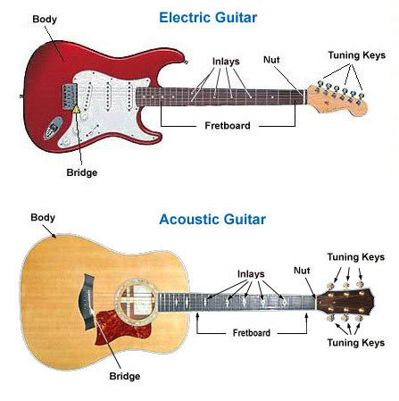 The parts of a guitar